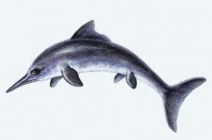 "Dolphin extinction is possible - This Dynosaur ""Ichthyosaur"" was wiped out once before."