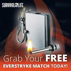 Free Everstryke Match
